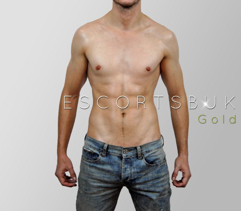escort service guide gay massage com