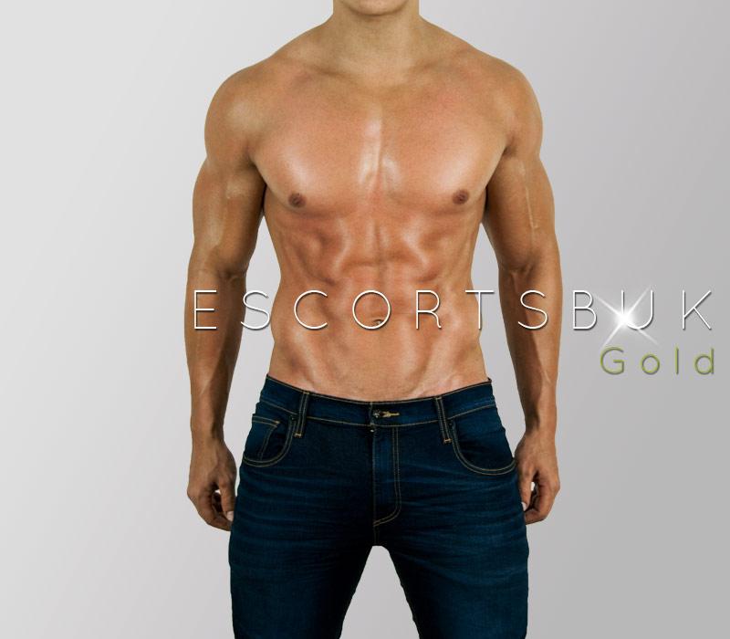 escort para hombres servicio escort gay